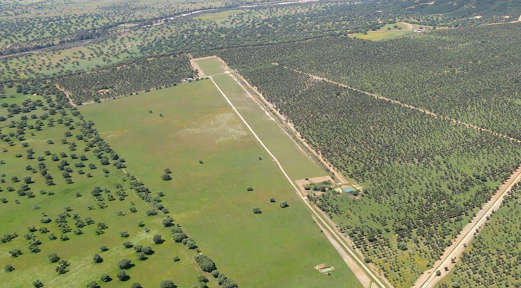 Aeródromo Guadalupe Alia